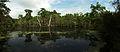 Brazos Bend State Park, Pilant Slough.jpg