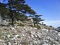 Brdo sv.ilija06219.JPG