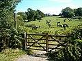 Bridleway in Mells, Somerset.jpg