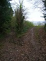 Bridleway to Bowlers Town - geograph.org.uk - 300227.jpg