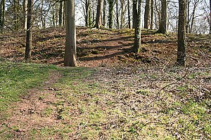 Dolbury - Earthworks at Dolbury