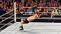 Brock Lesnar German Suplex.jpg