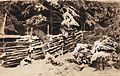 Bruno Liljefors - Winter scene with hunter and fox by fence 1898.jpg