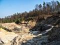 Buch-Bischwind Steinbruch -20200328-RM-154820.jpg