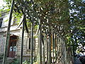 Bucuresti, Romania, Casa Mihail Sutu pe Str. Nicolae Iorga nr. 12, sect. 1 (detaliu 2).JPG