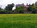 Buttercup field between Meerut Lane and Martins Road, Brockenhurst - geograph.org.uk - 172501.jpg