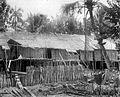 COLLECTIE TROPENMUSEUM Een langhuis in een Dajak dorp aan de Boven-Landak TMnr 10016923.jpg