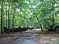 Cabin Camp 3 PRWI 2.JPG