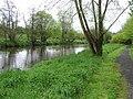 Camowen River, Omagh - geograph.org.uk - 1270987.jpg