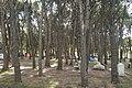 Camping Villa Ventana - panoramio.jpg