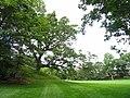 Campus, Wellesley College - DSC09639.JPG