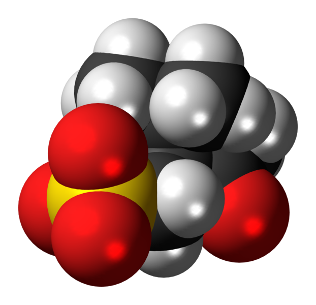 File:Camsilate anion 3D spacefill.png