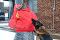 Canines bite into work 131125-F-BH151-106.jpg