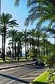 Cannes - Boulevard de la Croisette - View West.jpg