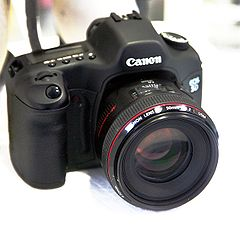 Canon5D-50mm12 mg 0892.jpg