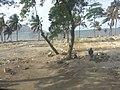 Cap-Haitien, Haiti - panoramio (15).jpg