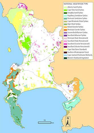 Biodiversity of Cape Town - Cape Town's surviving vegetation types