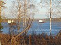 Cargo ships near Kuznechnoye - panoramio.jpg