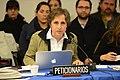 Carmen Aristegui.jpg