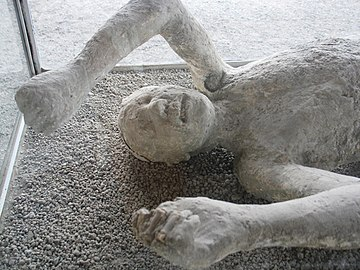 Casts from the Macellum (Pompeii).JPG