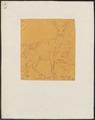 Cervus leucotis - 1849 - Print - Iconographia Zoologica - Special Collections University of Amsterdam - UBA01 IZ21500352.tif