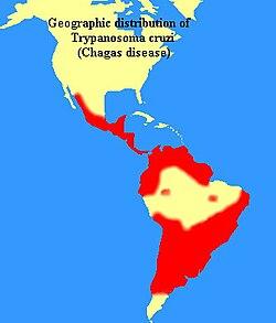 Trypanosomiaasi
