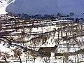 Charan bagh-khor road - panoramio.jpg
