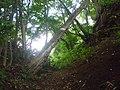 Chasm of Kobetsuzawa.JPG