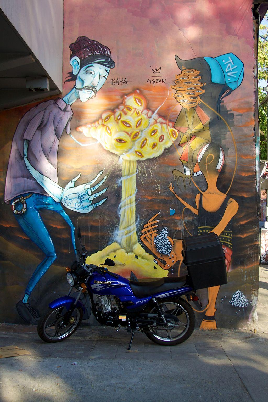 Chile - Santiago 10 - street art (6831646520)