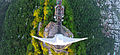 Christ the Redeemer - From Above.jpg