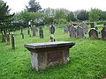 Churchyard, The Church of St Mary the Virgin, Holne - geograph.org.uk - 1311546.jpg