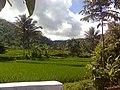Ciseupan-Cikaret - panoramio.jpg