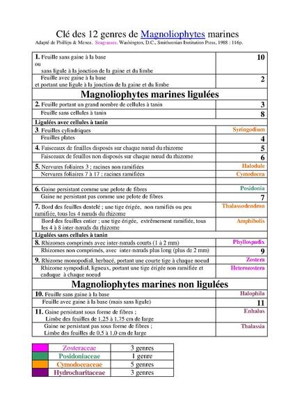 File:Clé des magnoliophytes marines.pdf