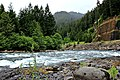 Clackamas River, Mt Hood National Forest (27357302904).jpg
