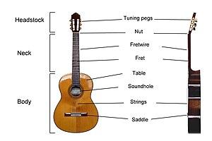 A diagram of the parts of a classical guitar l...