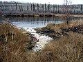 Clearwater River Salt Spring.jpg