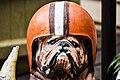 Cleveland Browns (28062423812).jpg