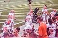 Cleveland Browns vs. Atlanta Falcons (29031454662).jpg