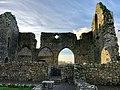 Cloister, Hore Abbey, Caiseal, Éire - 46585887811.jpg