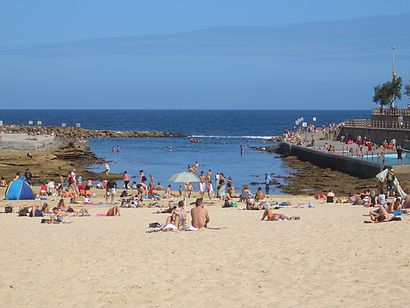 How to get to Clovelly Beach with public transport- About the place