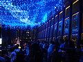 Club333 Tokyo Tower (3).jpg