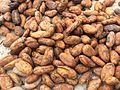 Cocoa-1580724.jpg