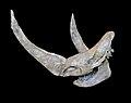 Coelodonta antiquitatis Crane.jpg