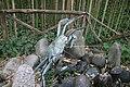Collodi, Parco di Pinocchio, il granchio 01.jpg