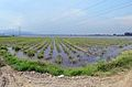 Colombia Floods8 (5670753562).jpg