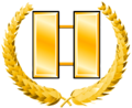 Commander insignia Gold.png