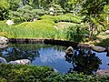 Como Park Zoo and Conservatory - 58.jpg