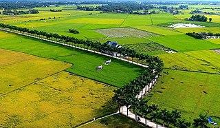 Tân Trụ District District in Mekong Delta, Vietnam