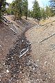 Cone flows on ground - Flickr - daveynin.jpg