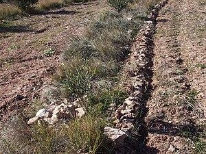 """Contour plowing - """"Contour bunding"""", Catalonia, 2007"""